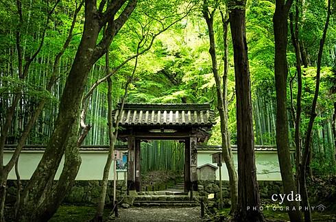 Jizo-in temple