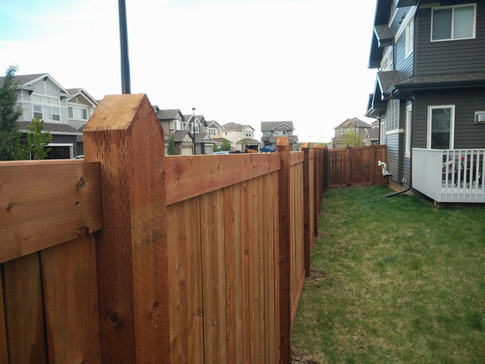 Privat backyard