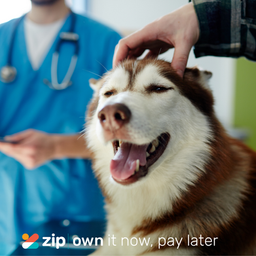 We now offer Zippay and Openpay!