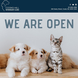 Just a reminder that we are open today!