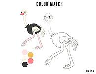ostrich color match.jpg