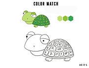 Turtle color match.jpg