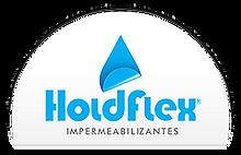 çpgp_holdflex.png