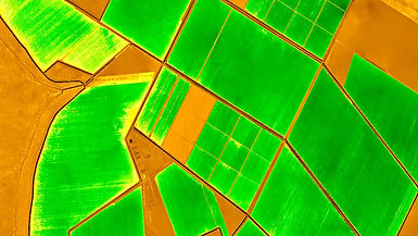 Agricultura imagen1