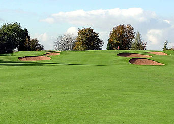 Golf Imagen5