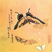 Butterflies, by Buson