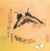 Butterflies, by Buson