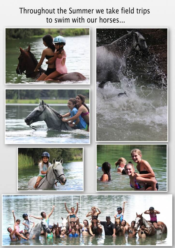 Summer-horseback-riding-camp-v2_4-724x10