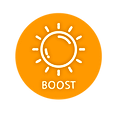 boosticon.png