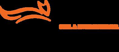 Fox_logo_png.png