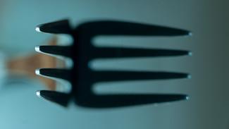 Hambre y hábitos alimenticios
