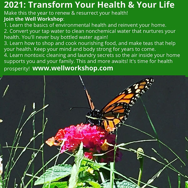 Well Workshop Health School