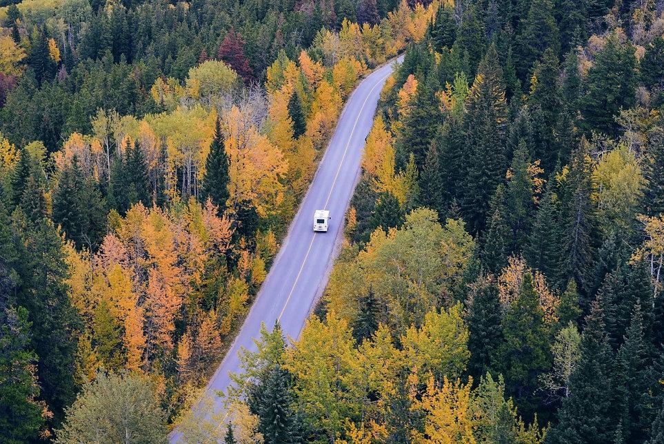 white-car-traveling-near-trees-during-da