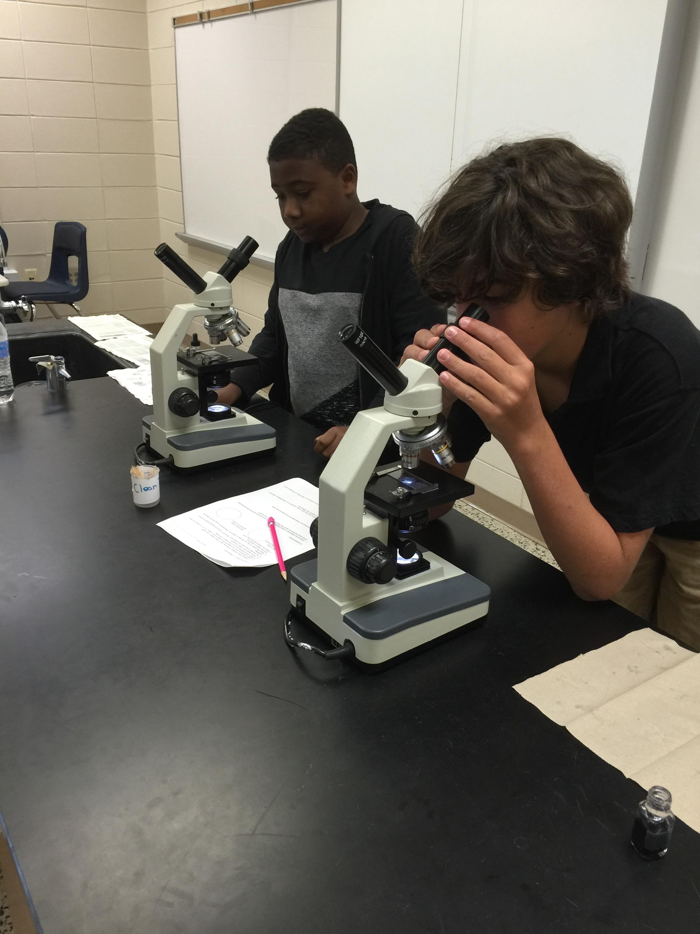 Pathogen Study