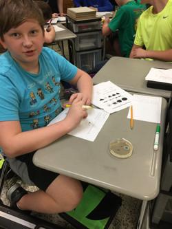 Examining Colonies