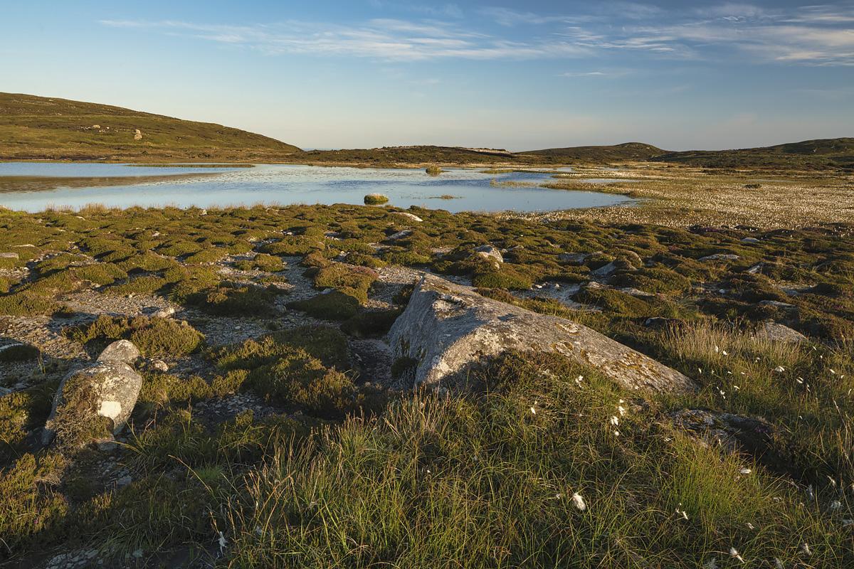 Blanket Bog, Co. Donegal
