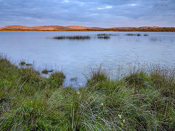 CKP_Landscape_Burren_09082020007.jpg