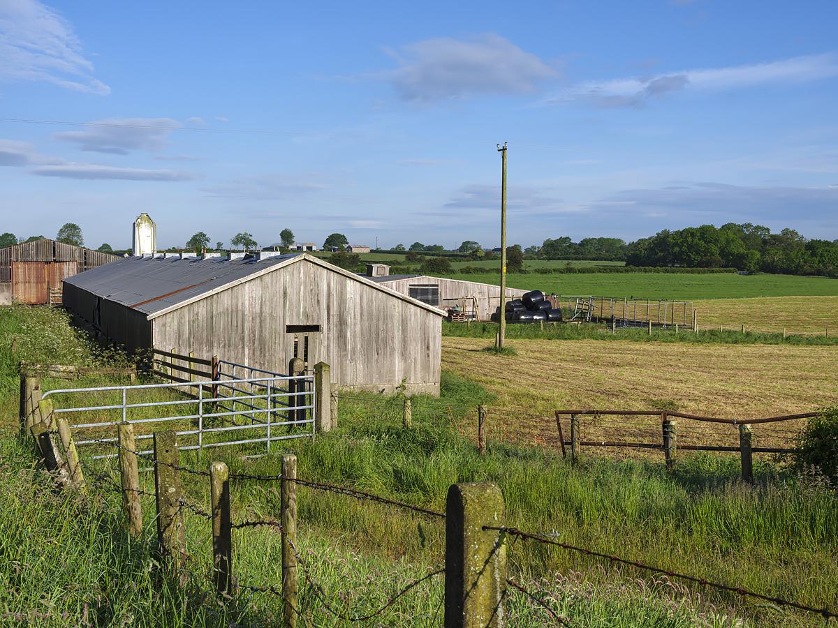 Farm near Dervock, County Antrim