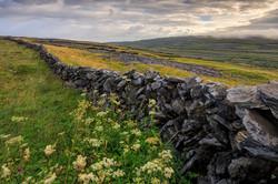 Burren Uplands, Gleninagh