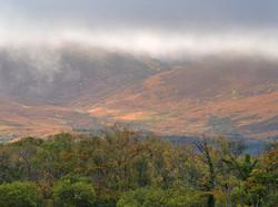 Forest & Mountain, Knockreer