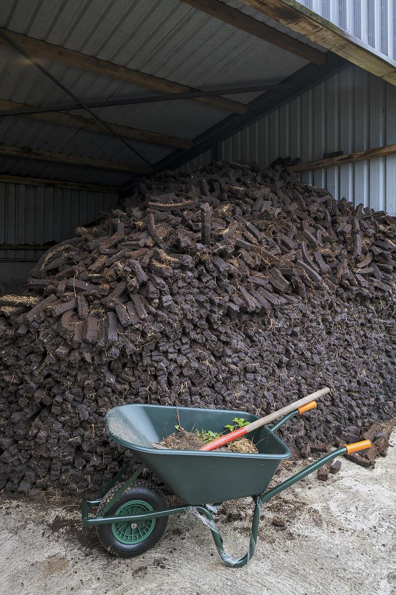 Turf Harvest
