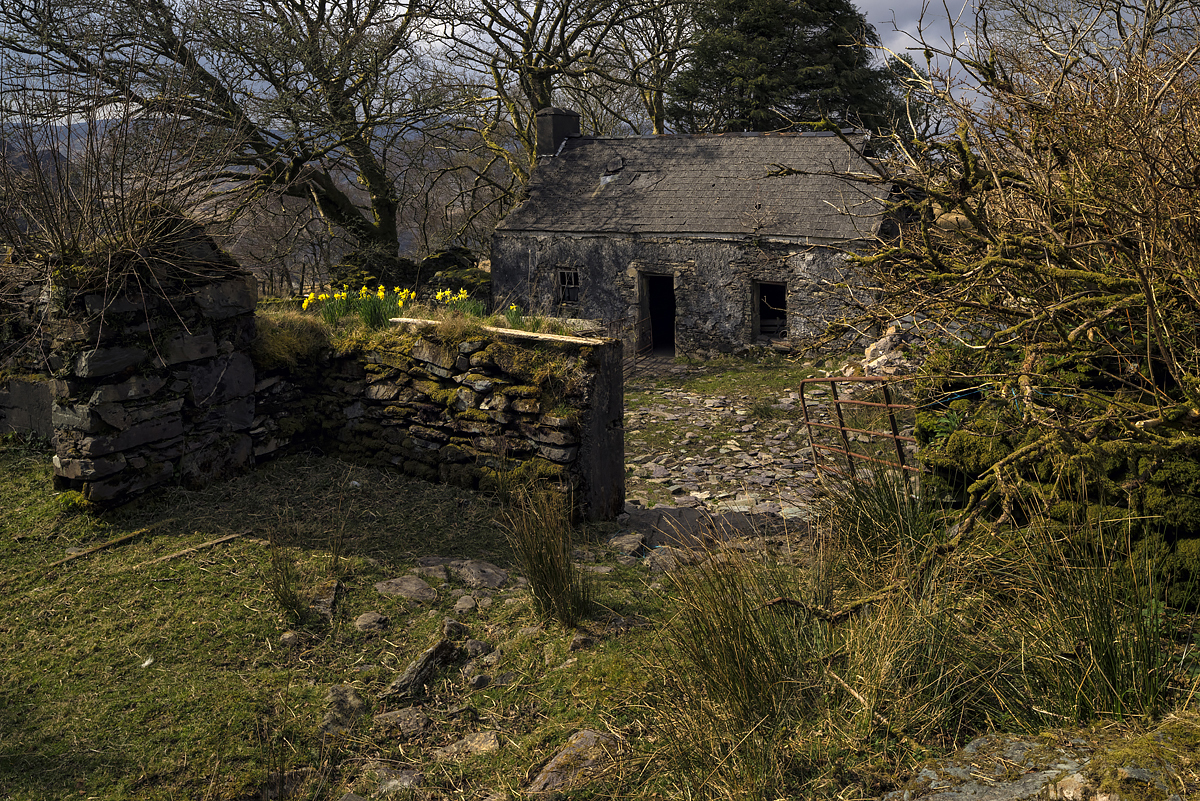Cottage, County Cork