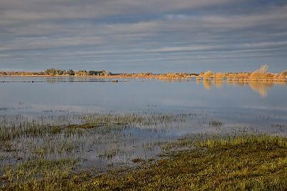 CKP_Landscape_Leinster012.jpg