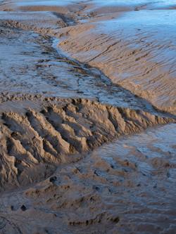 Mudflat Detail