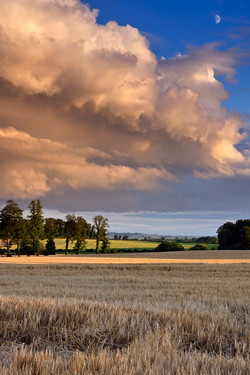 Summer Evening, County Louth