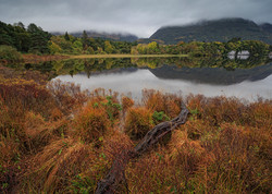 Muckross Lake III