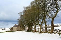 Cottage near Torr Head
