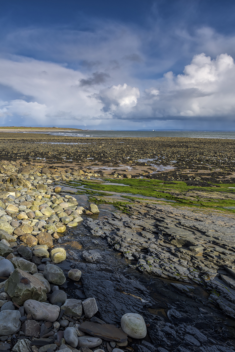 The Estuary near Doonaha