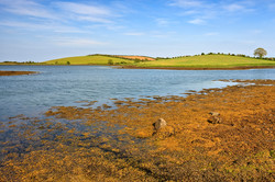 Strangford Lough, County Down