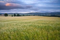 Knockmealdown Mountains, County Tipperary