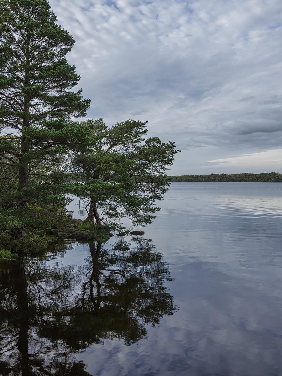 Muckross Lake II