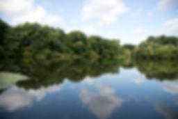 Borwick lake