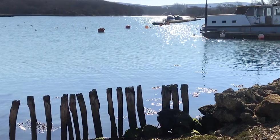 Shalfleet Quay, IOW  - Virtual Sketch Walk (1)