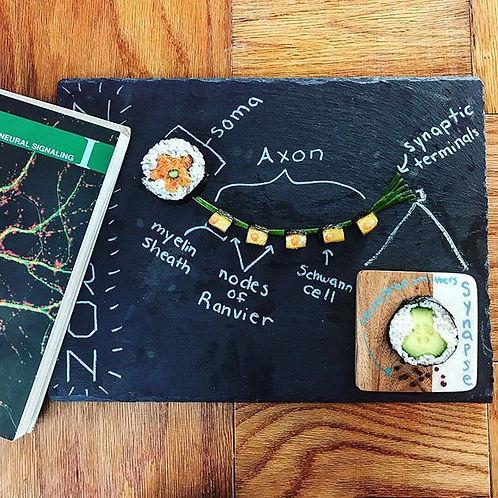Sushi Science   Janelle Letzen   Neuron