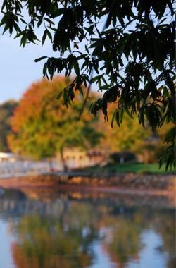fall-lake-dock-views