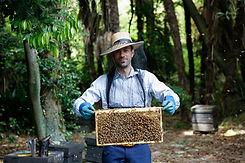 Daniel Silva Beekeeping.jpg