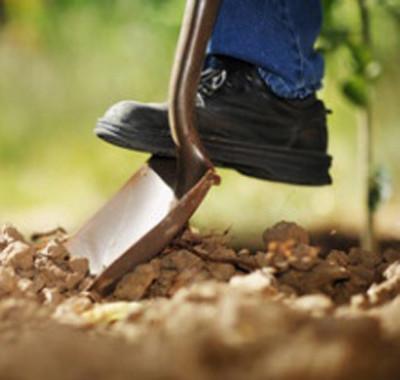 Tender digger of the dirt?