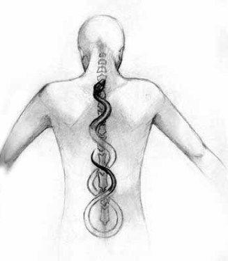 Unification de l'ombre et de la lumière intérieure afin d'atteindre l'unité / la santé ultime / l'état de yoga.  Le serpent blanc représente la part de lumière et le serpent noir représente la part d'obscurité. Les deux ne peuvent s'unir qu'au bout d'un long chemin (la colonne vertébrale comprenant les 7 centres énergétiques - chakras) d'introspection.
