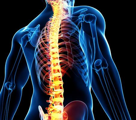 6 astuces pour une colonne vertébrale saine et forte