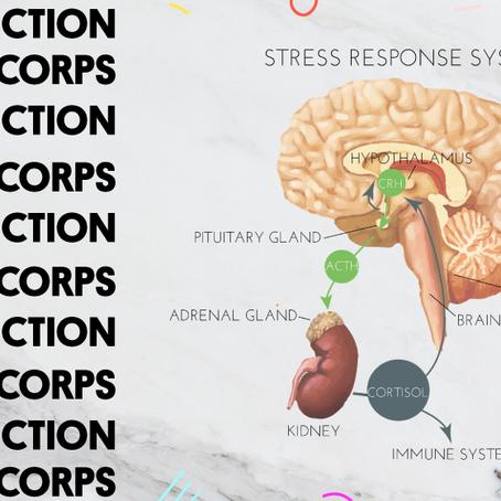 La neuroscience explique comment le Hatha Yoga et la pensée positive guérissent le corps