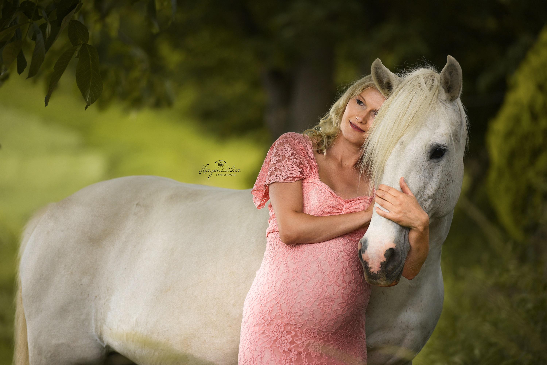 schwanger Pferd Halle Fotos