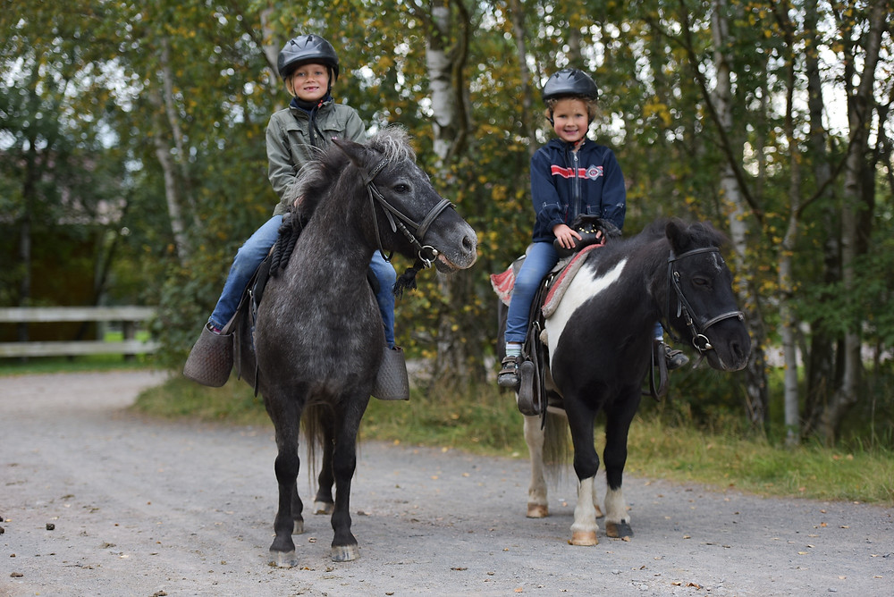 Ponyreiten Kinder Halle
