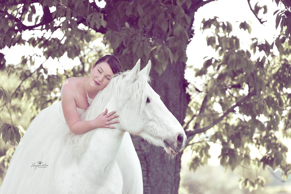 Pferdefotografie Pferd Schimmel Halle