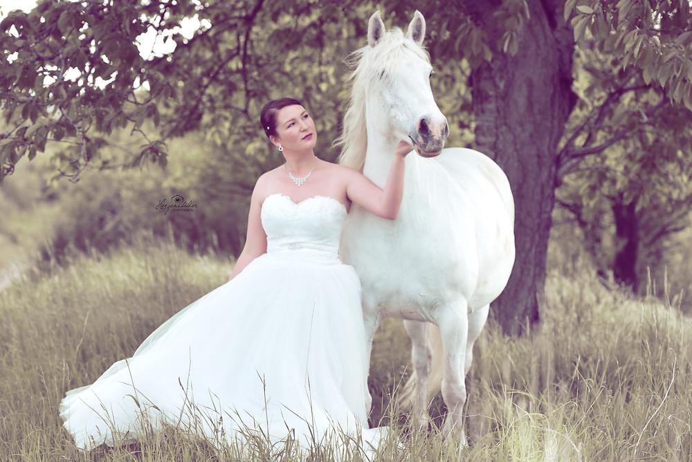 Pferd Halle Fotografie Hochzeit Schimmel Pferdebilder Hengst Traumpferd