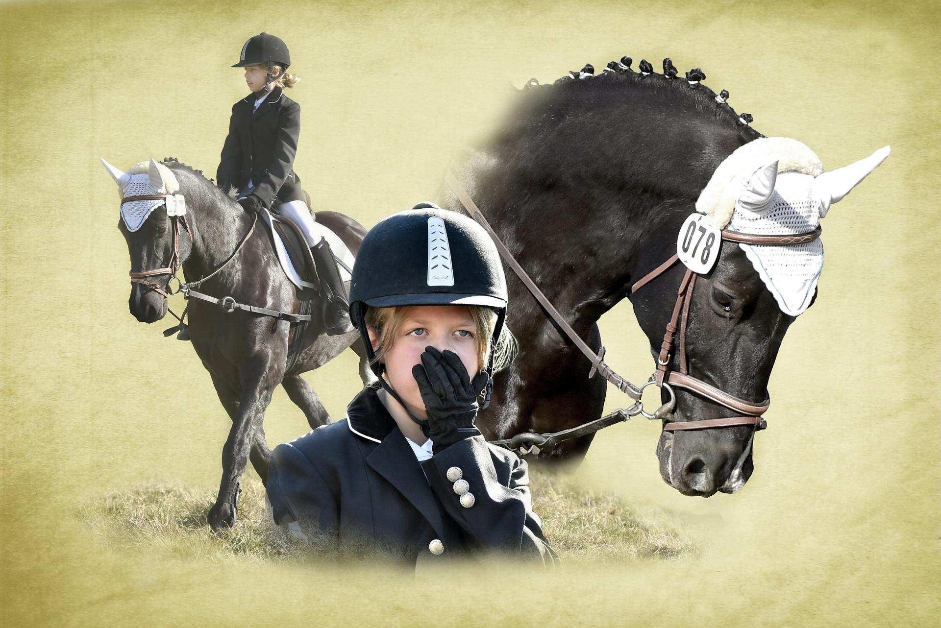 Turnier Anke Dehn Reiterhof Teicha Dressur Fotografie Pferd Hengst Collage Hannoveraner Eskadron reiten Halle Saale Kind