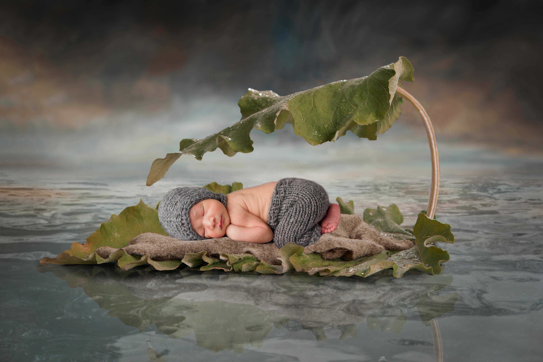 Baby Fotos Halle